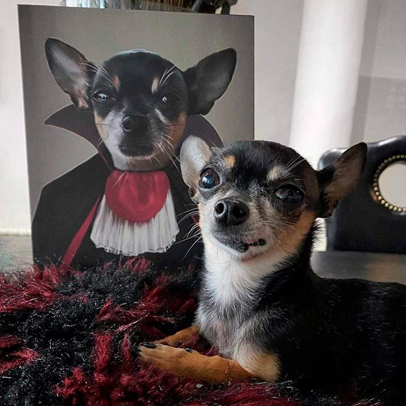 Портрет собаки в образе вампира