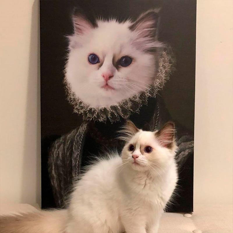 Портрет кошки в образе королевы